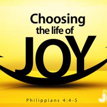 Logo Joy Optical