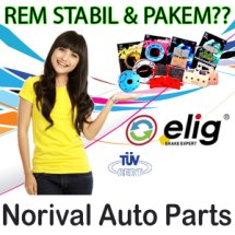 Logo Norival Auto Parts