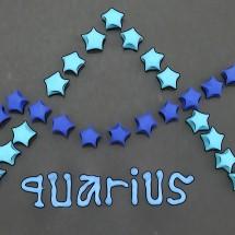 aquarius store