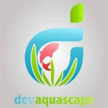 Dev aquascape
