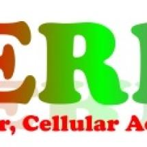 Ceria computer cellular