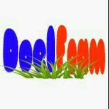 DoelFoam