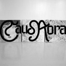 Caurora Art