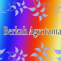 BERKAH AGROTAMA