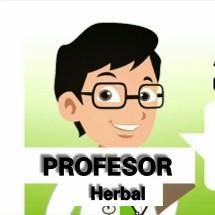 Profesor Herbal