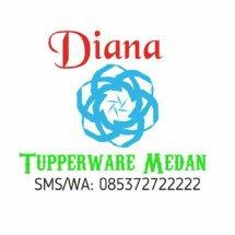 Diana Tupperware Medan