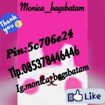 monicabags