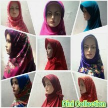 Dini-Collection