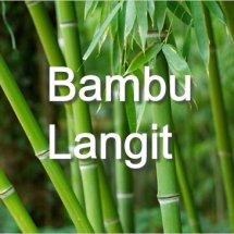 BambuLang