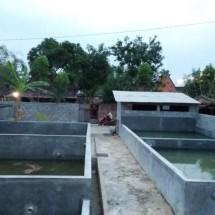 Jaya Mandiri multifarm