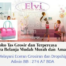 elvi collection