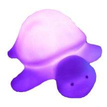 Turtle Electronic