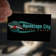 Aquascape City