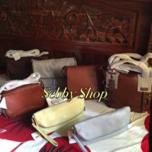 Sebby's Fossil Shop