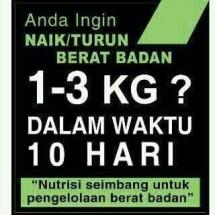 Buag lemak