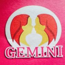 Gemini ipey