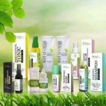 green angelica produk