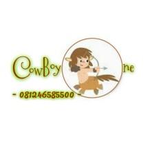 CowBoyOne