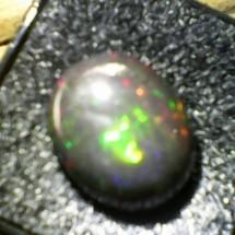 Darwin Stone