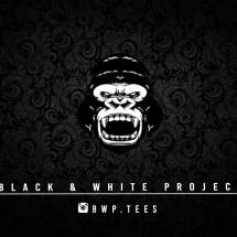 Black & White Project