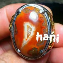 Dhani's Gems