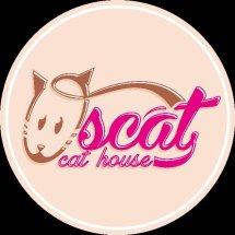 oscat cat house