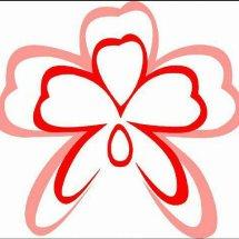 Cattleya Florist
