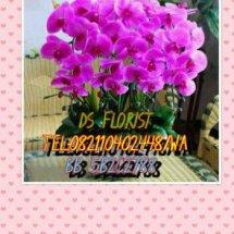 DS FLORIST