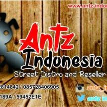 AntzIndonesia
