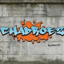CHADROEZshop