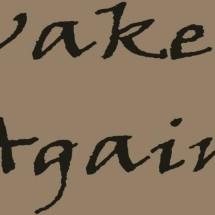 Wake Again