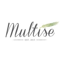 Multise Official