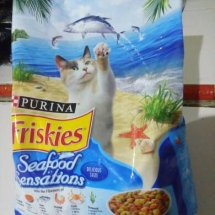 Dshe food cats shop