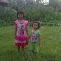 andiena cell