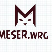 MESER.wrg