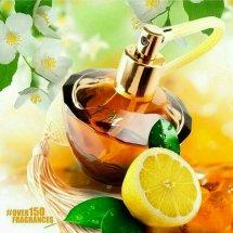 Ayani Parfum