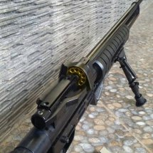 zg air rifle
