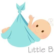 Little B Store