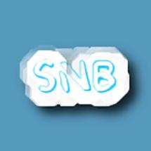 SnB Aneka Shop