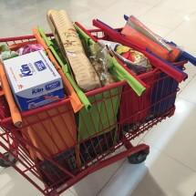 SHOP - Trolley Bags