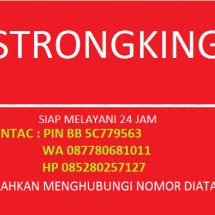 StrongKing MJ