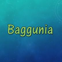 Baggunia
