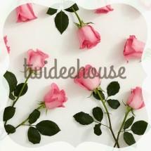 twideehouse