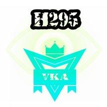 H295 shop