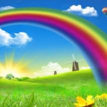 Rainbow Shop 888