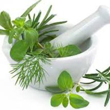faness griya herbal
