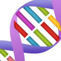 DNA Photo Store