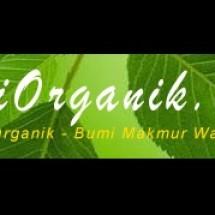 Bertani Sayuran Organik