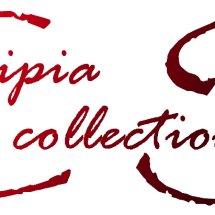 Cipiya Shop