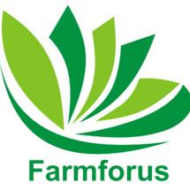 Farmforus Yogyakarta